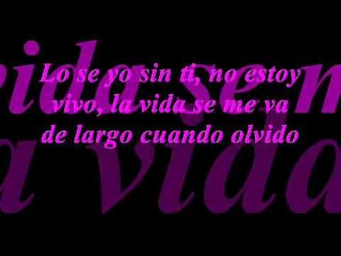 Yo Sin Ti-Pepe Aguilar 2011 con letra.wmv