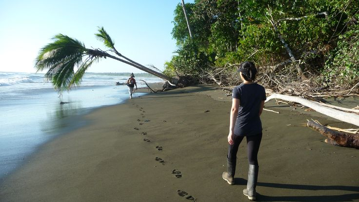 Exploring the amazing Corcovado National Park, Osa Peninsula, Costa Rica