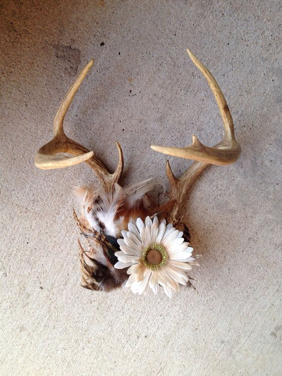 Deer antler decor on etsy home is where the is for Antler decoration