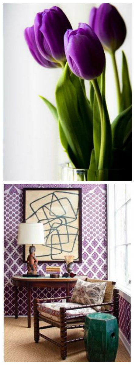 """The juxtaposition of vibrant green and deep purple look beautiful in nature and design. #DesignTipTuesday #FlowerPower """"The juxtaposition of vibrant green and deep purple look beautiful in nature and design. #DesignTipTuesday #FlowerPower"""