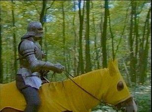 Ridders waren dure soldaten die meevochten in het leger van een adellijk persoon. In ruil daarvoor kreeg de ridder een groot stuk land.