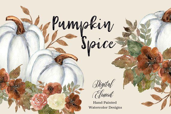 Watercolor Fall And Autumn Pumpkin Clip Art White Pumpkins Rust