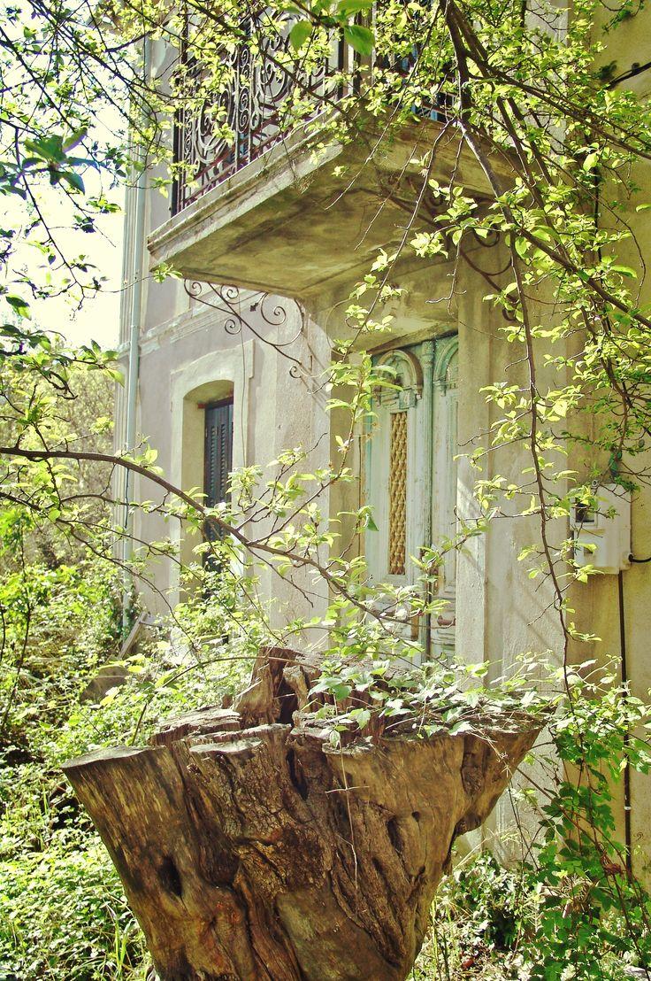 Η αρχιτεκτονική στο Πήλιο έχει χαρίσει μοναδικά κτίρια, τα οποία μέχρι και σήμερα σαγηνεύουν τις αισθήσεις μας. Το παλιό αρχοντικό που βρίσκεται στο χωριό των Αφετών μπορεί να είναι ακατοίκητο τα τελευταία χρόνια, όμως δεν παύει να αποπνέει μία κομψότητα που δεν συναντούμε εύκολα.