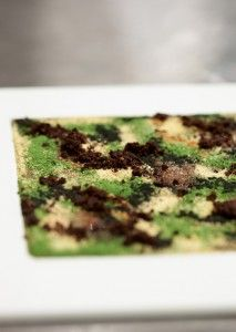 Camouflage by Massimo Bottura