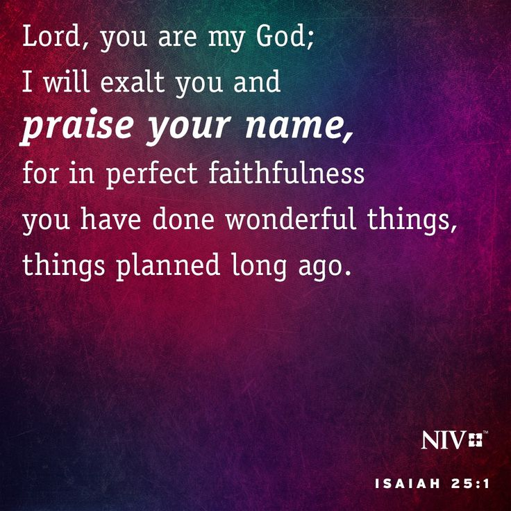 NIV Verse of the Day: Isaiah 25:1