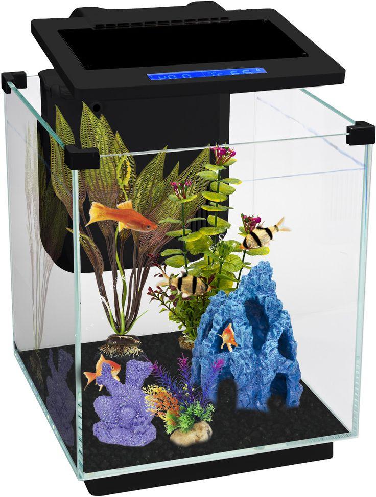 25 best ideas about aquarium led lighting on pinterest for Cheap betta fish