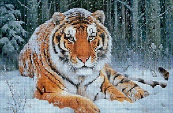 Предпросмотр схемы вышивки «Тигр»