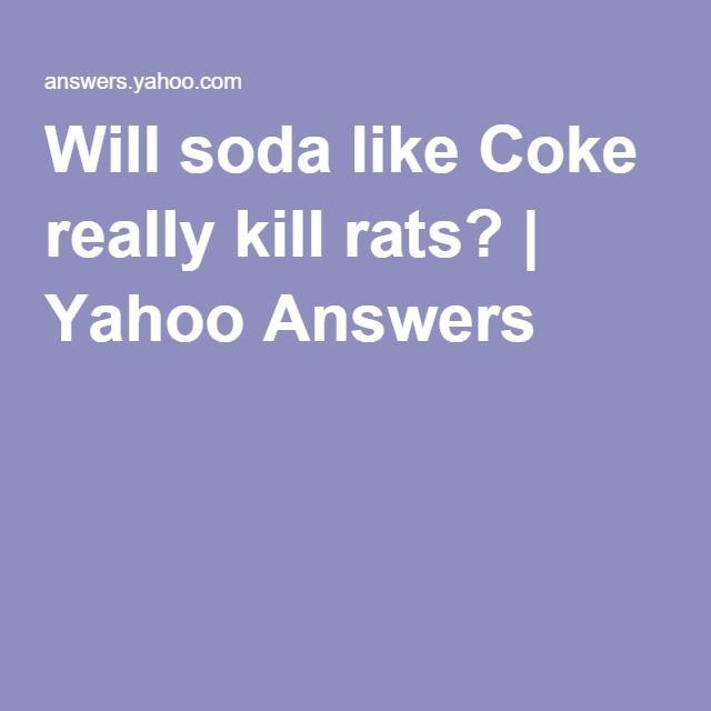Simple Will soda like Coke really kill rats Yahoo Answers Yahoo AnswersKoks RattenGartenGarden