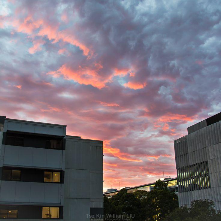 Epic Sunrise captured from UNSW Kensington Campus Gate 2