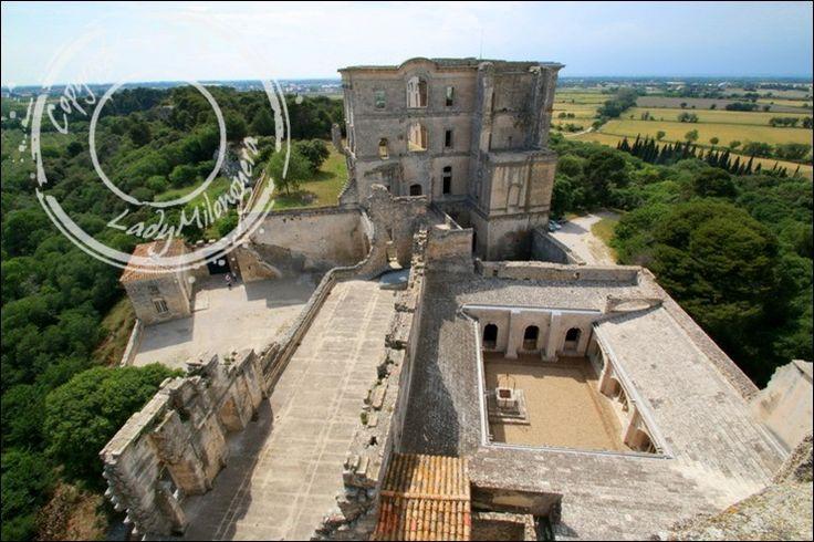 Abbaye-Montmajour-Arles (46)
