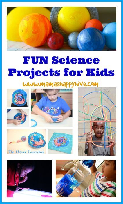 Collection of fun science projects for kids to explore and enjoy.