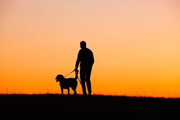 Pet Sitting: Γιατί η απώλεια ενός σκύλου μπορεί να είναι πιο δύ...
