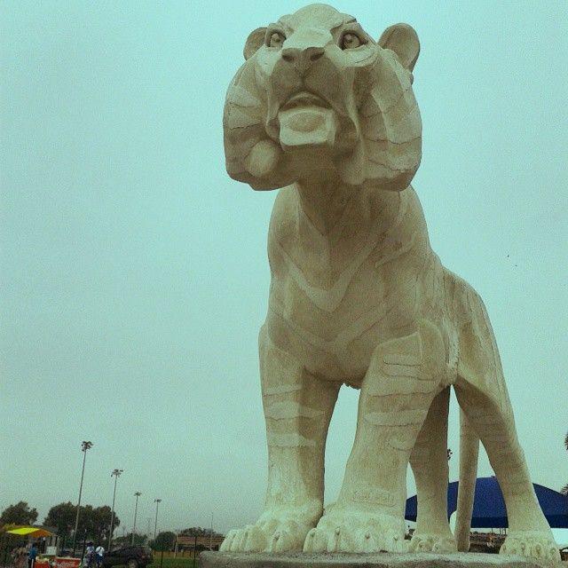 Escultores Mexicanos, Monumento EL Tigre UANL, Juan Canfield, escultor, 81 aniversario de la Universidad Autonoma de Nuevo Leon, e inauguracion de la Universiada Nacional, Monterrey Mexico 20 de abril 2015 http://www.casacanfield.com Creo que vi un lindo gatito #tigre #UANL #UniversiadaNacional #Universiada2015