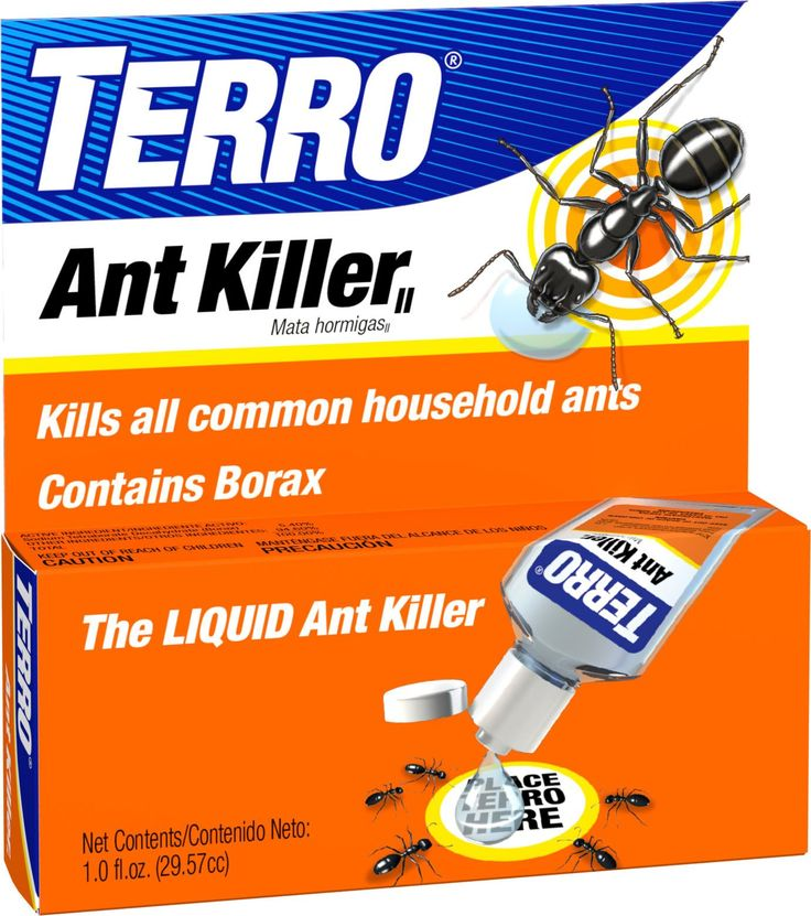 17 best ideas about ant problem on pinterest homemade ant killer ant remedies and sugar ants. Black Bedroom Furniture Sets. Home Design Ideas