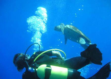 Kaş'ta birbirinden güzel 35 dalış noktası vardır. www.korsanadahotel.com #dalış #korsanada #kaşotel