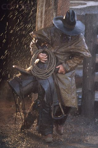 cowboys in rain - Bing Images