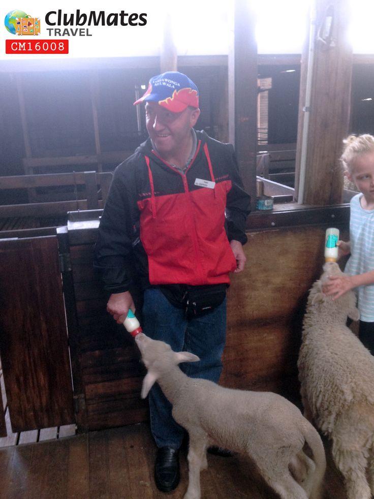 Clubmates @ Yallingup Shearing Shed