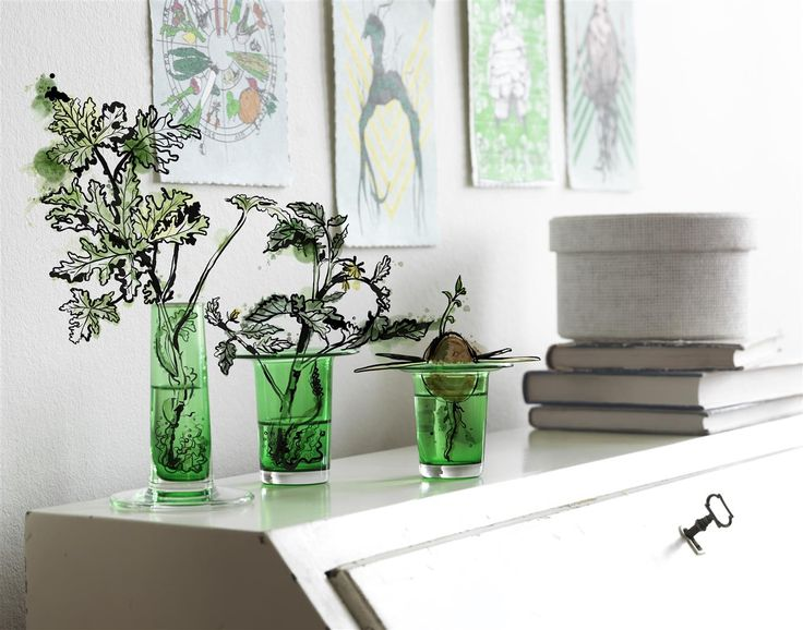 Help little cuttings put down roots. Start your own garden. Brighten your home. Beautiful ANVÄNDBAR vase for cuttings. Dishwashersafe glass, So get a little greener. And start to live a little kinder. #Livealittlekinder #IKEAcollections #ANVÄNDBAR #IKEA #greenhomes #vase