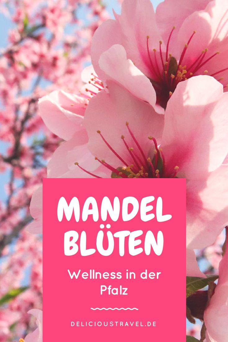 Wellness-Wochenend-Trip in die Pfalz zur Mandelblüte