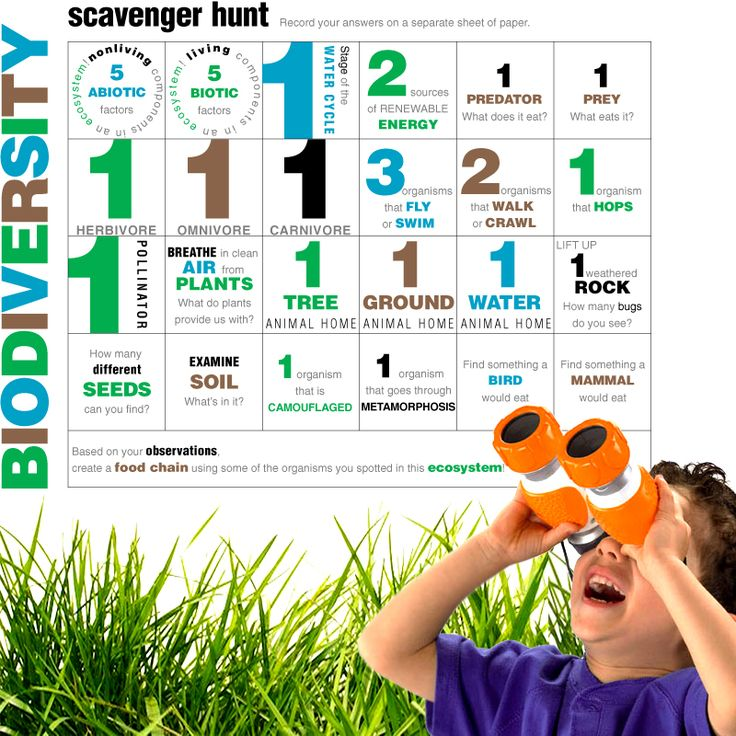 Free printable Biodiversity Scavenger Hunt! Fun science activity for elementary age kids