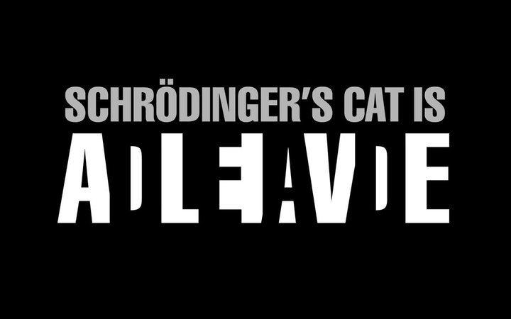 """Excelente uso de figura y fondo, a partir de la paradoja de """"El gato de Schrödinger"""""""