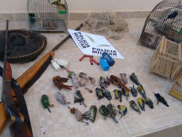 Polícia encontra 26 pássaros abatidos em fazenda no município de Cristália, no Norte de Minas