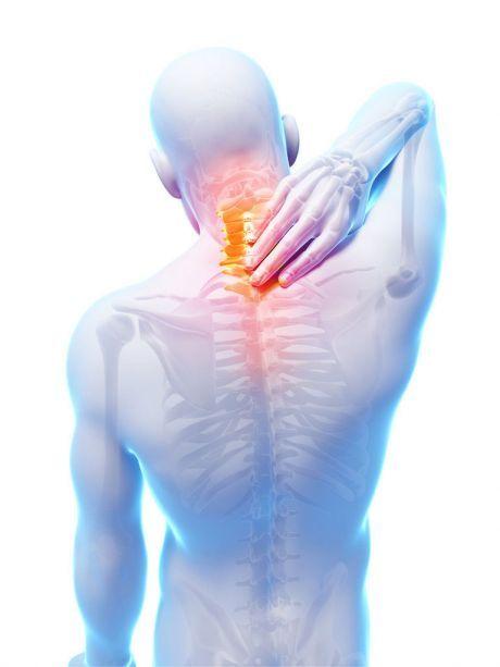 9 несложных упражнений для здоровой спины   Сияние Жизни