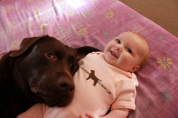 """Shirt says: """"My brother is a chocolate lab"""". Love kids and dogs."""