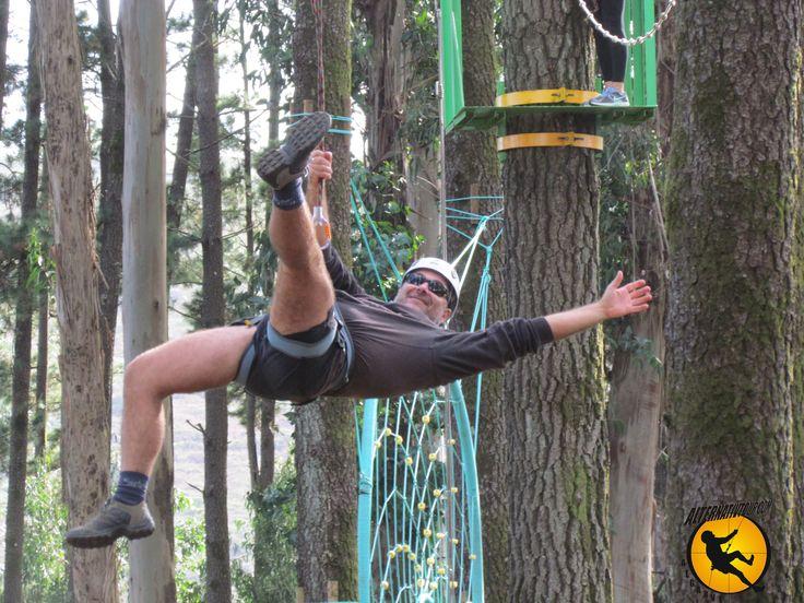 Slide (Arborismo)