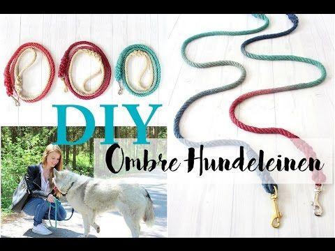 DIY Ombre Hundeleine + Gewinnspiel - All I want is everything