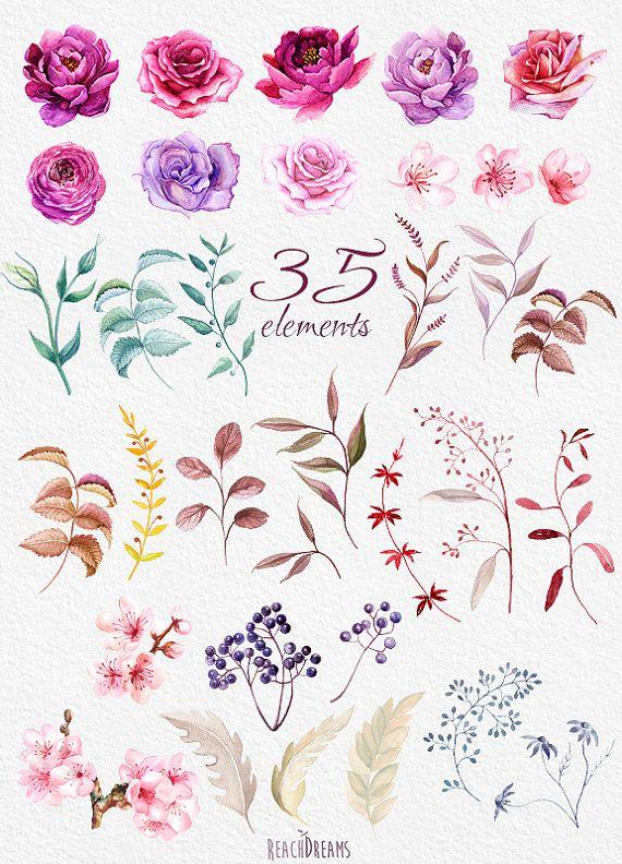 Acuarela peonías de elementos florales de Borgoña y por ReachDreams