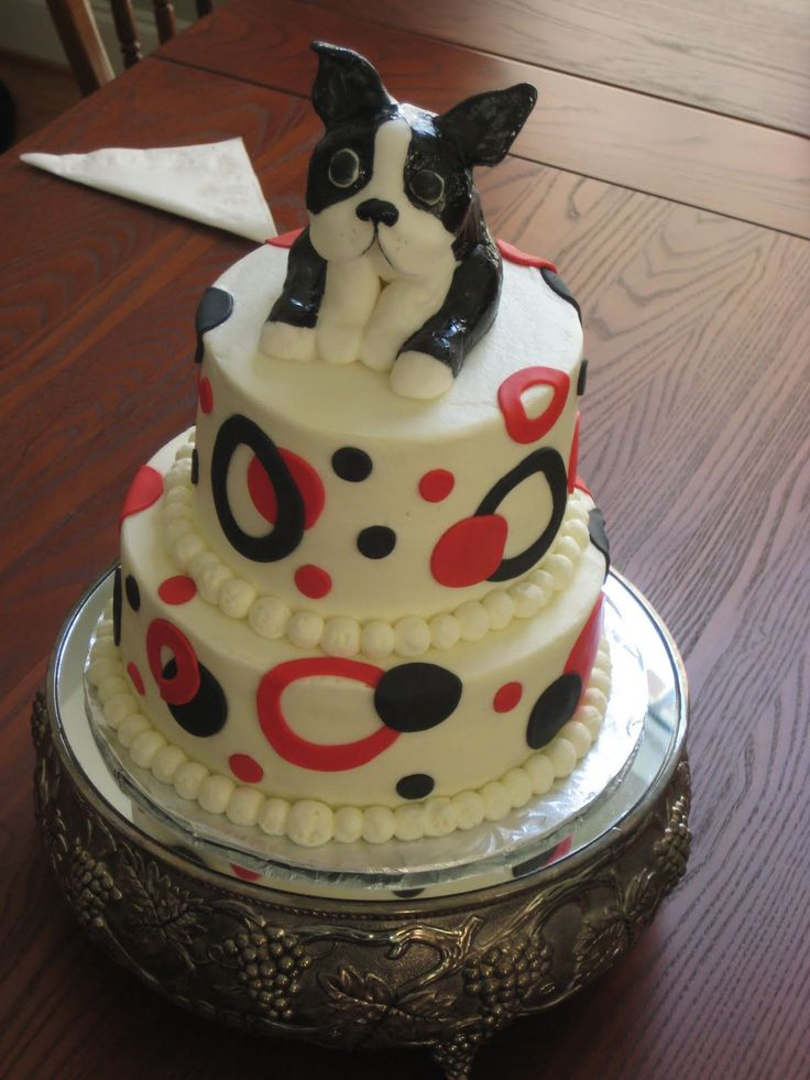 boston terrier cake...i love cake and i love boston terriers! what's not to like?