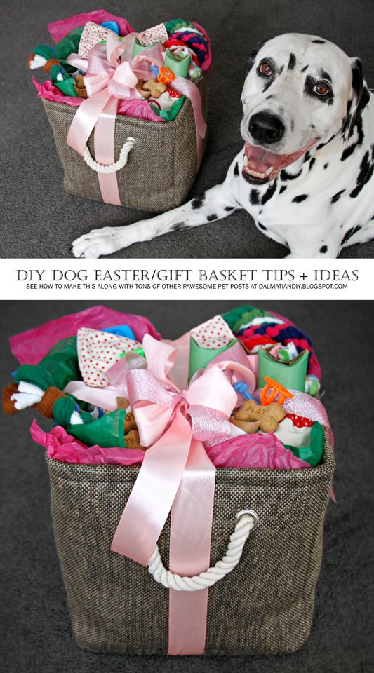 The 25 best dog gift baskets ideas on pinterest basket ideas assembling a diy dog easter or any occasion gift basket negle Images