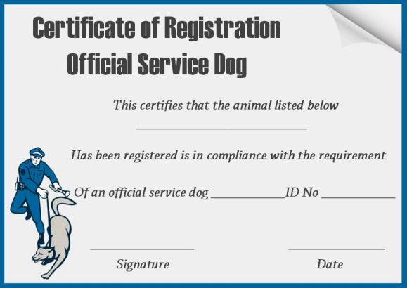 Service Dog Certificates Template Free Id Card Template