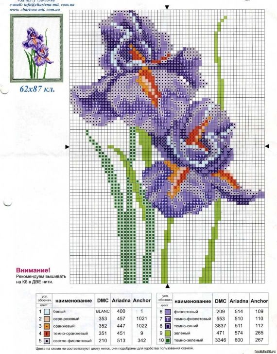 Schemes for embroidery: Irises