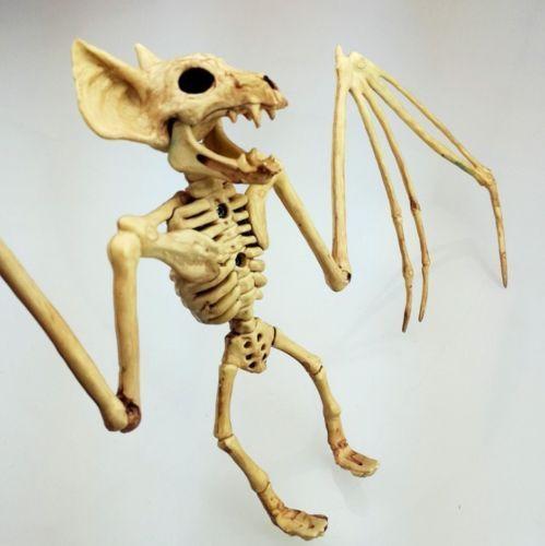 Halloween Party//Prop Skeleton Bat