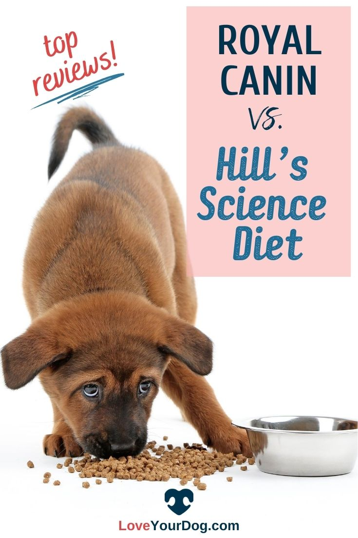 Royal Canin Vs Hill S Science Diet Dog Food Comparison Dog Food Comparison Hills Science Diet Science Diet