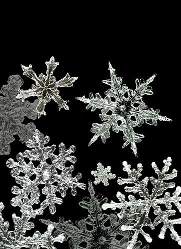 Image: Macro Snowflake (© Alaska Stock/Alamy)