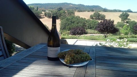Denner Vineyards - Paso Robles, California #Attractions #Best #Wineries #Wine #winecountry #Paso #Robles #California