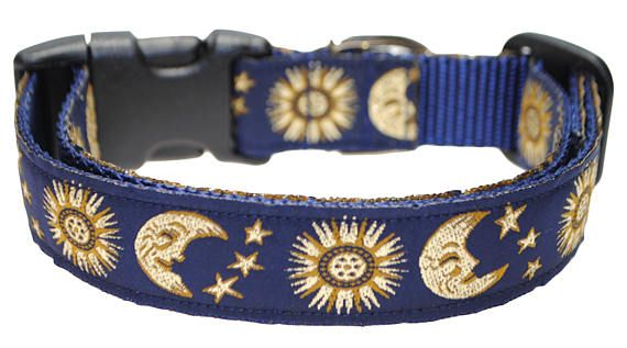 I Love You To The Moon And Back Dog Collar 1 Inch Dog Collar Moon And Stars Ribbon Adjustable Collar Pet Collar