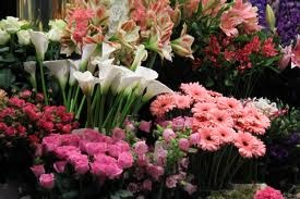 http://nycflowerdeliveries.yolasite.com/  Flower Delivery In Nyc