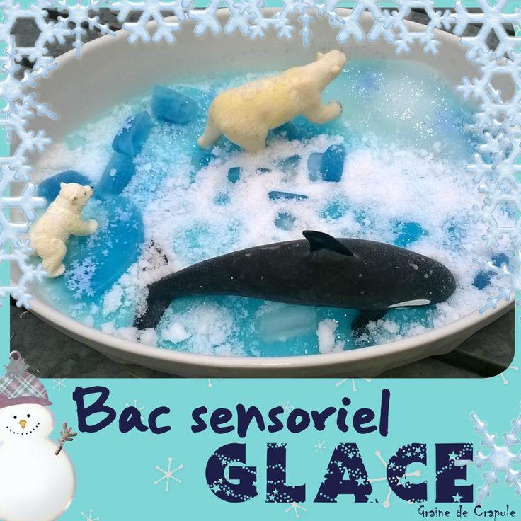Bac sensoriel