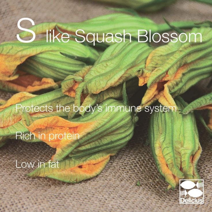 S LIKE SQUASH BLOSSOM! A typical summer flower, we love to have it fried and stuffed with cheese and anchovies!