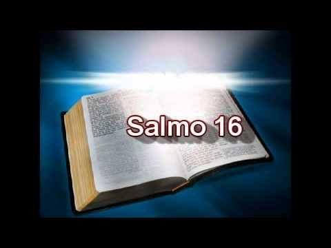 Protégeme como a la niña de tus ojos 17:1 Oración de David.  Escucha, Señor, mi justa demanda,  atiende a mi clamor;  presta oído a mi plegaria,  porque en mis labios no hay falsedad.  17:2 Tú me harás justicia,  porque tus ojos ven lo que es recto:  17:3 si examinas mi corazón  y me visitas por las noches,  si me pruebas al fuego,  no encontrarás malicia en mí.  Mi boca no se excedió  17:4 ante los malos tratos de los hombres;  yo obedecí fielmente a tu palabra,  17:5 y mis pies se…