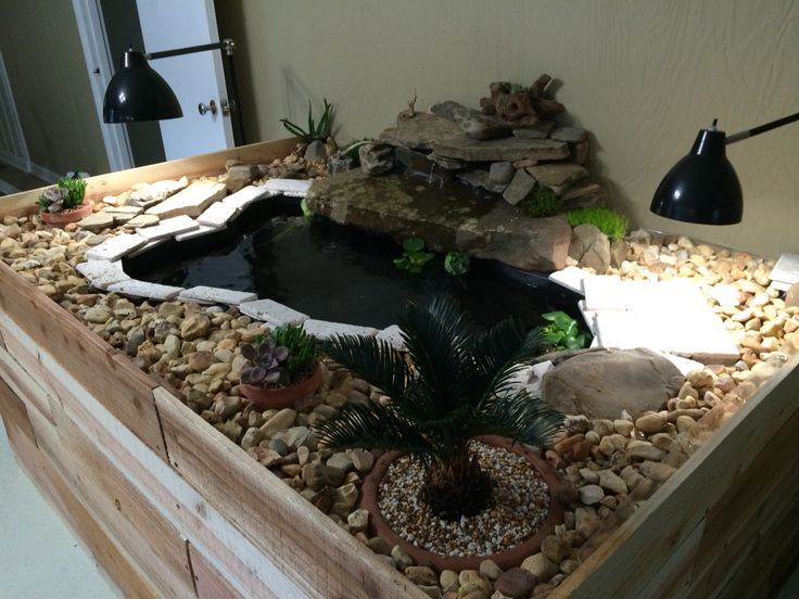 18 Best Images About Indoor Turtle Pond On Pinterest