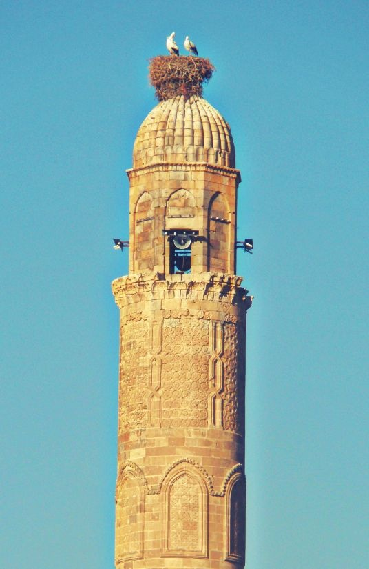 Storks nesting at the top of the El Rizk Mosque