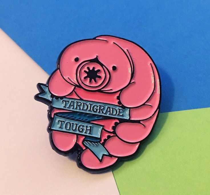"""1.25"""" Enamel pin with black metal featuring a tardigrade and a ribbon with the words """"Tardigrade Tough"""" on a cute teal ribbon. You know the tardigrade is one of my favorite microscopic critters becaus"""