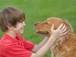 http://www.buzzle.com/articles/best-dogs-for-children-good-dogs-for-kids.html
