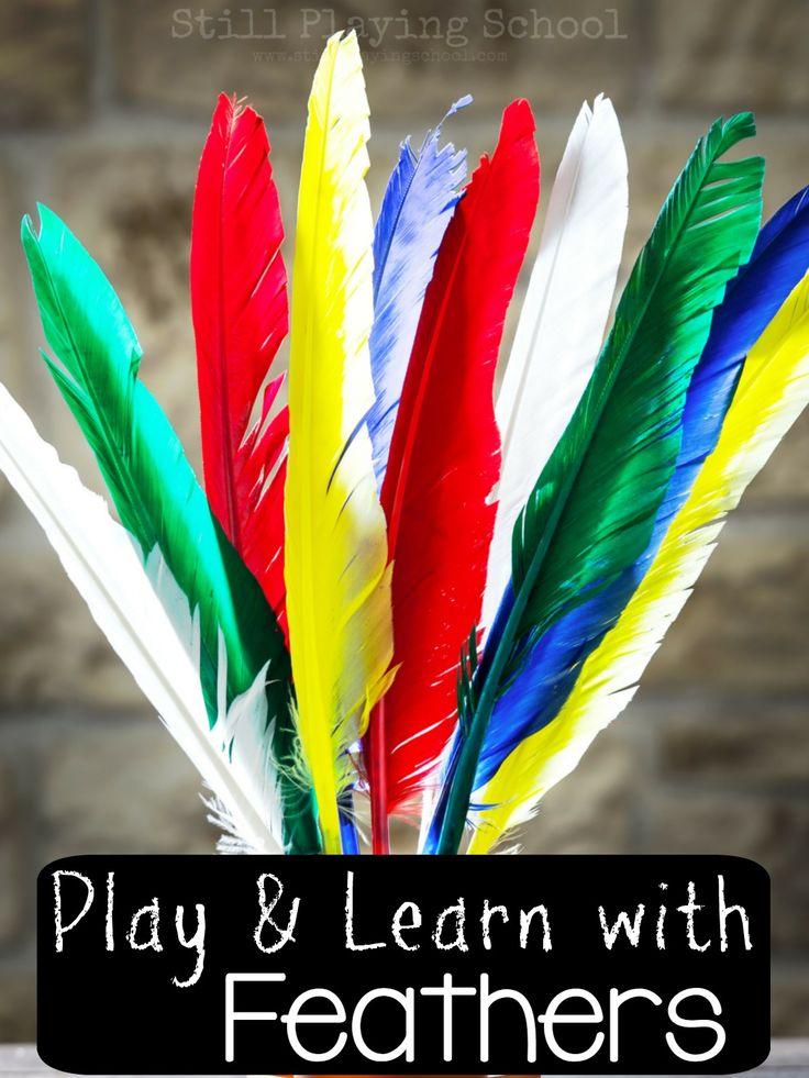 Bird Activities and Crafts - mothernatured.com