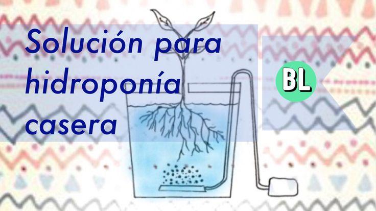 Y por solución no me refiero a resolver un problema de hidroponía, bueno tal vez uno, pero con solución me refiero al liquido que debemos añadir aparte de agua a nuestra hidroponia; para que esta t…